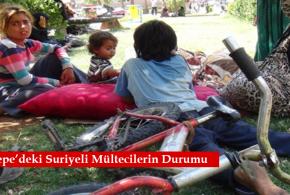 Kızıltepe-Mülteci